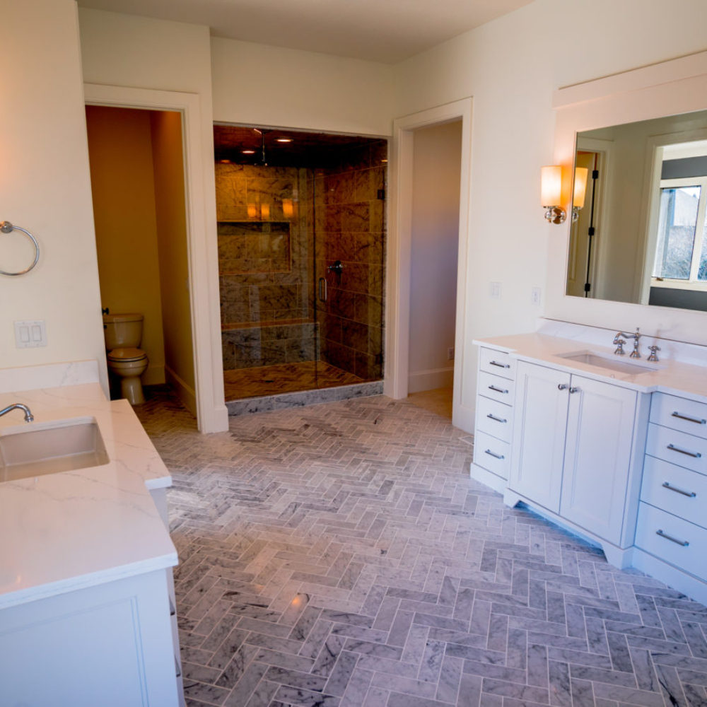 Oak Park Master Bathroom